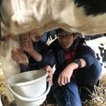 20181028 酪農体験